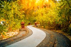 Zen garden, wellness and spa concept for well-being background stock photo