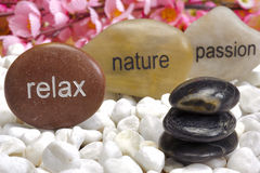 Zen garden with stones of passion Stock Image