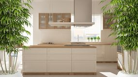 Zen interior with potted bamboo plant, natural interior design concept, modern wooden kitchen with wooden details, white minimalis. Tic architecture royalty free stock images