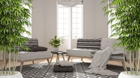 Zen interior with potted bamboo plant, natural interior design concept, scandinavian minimalist living room with big windows and. Carpet, contemporary modern royalty free stock photography