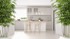 Zen interior with potted bamboo plant, natural interior design concept, scandinavian white kitchen with wooden details, island and. Stools, minimalist royalty free stock images