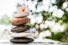 Zen kamienie z frangipani kwitną na bokeh tle Zdjęcia Stock