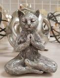 Zen Kitty Cat i Buddhameditation poserar royaltyfri fotografi