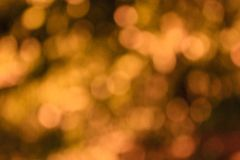Zen light Royalty Free Stock Photo