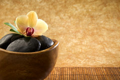 Zen-like scene with flower. Copy space Stock Photography