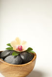 Zen-like scene with flower. Copy space Royalty Free Stock Photo