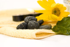 Zen like spa. With yellow flower Stock Photography