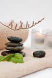 Zen-like SPA. With black stones Stock Photography
