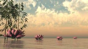 Zen lily flowers - 3D render Stock Photos