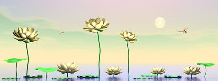 Zen lily flowers - 3D render Royalty Free Stock Photo