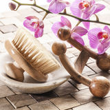 Zen massage and body peeling. Spa and wellbeing concept - cleansing and massaging with femininity symbols Stock Image