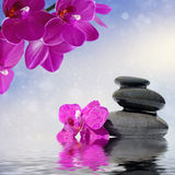 Zen massage stones and orchid flowers reflected in water. Zen spa concept background - Zen massage stones and orchid flowers reflected in water Stock Image