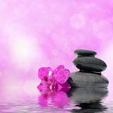 Zen massage stones and orchid flowers reflected in water Stock Photos