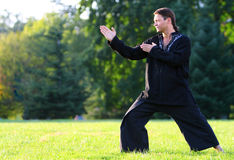 Zen master Stock Image