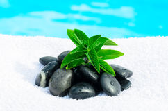 Zen mint and stones Stock Photo