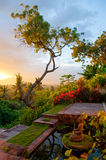 Zen Moment. Morning sun on the north coast of Bali Royalty Free Stock Photography