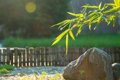 Zen nach Regen stockbild