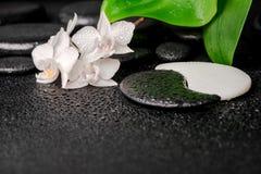 Zen- och Yin-Yang stenar, vit orkidé, grönt blad arkivfoton