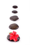 Zen path. Top angled shot hibiscus on zen stones Royalty Free Stock Photos