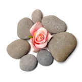 Zen path. Stones on white background Stock Image