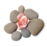 Zen path Stock Image