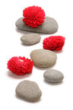 Zen path Stock Photography