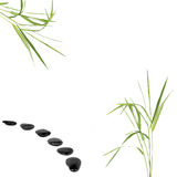 Zen Path. Zen abstract of bamboo grass with a black pebble path, over white background Royalty Free Stock Images