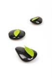 Zen pebble and green leaf Stock Photo
