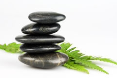 Zen pebbles. Black pebbles isolated on a white background with fern leaves Stock Photo