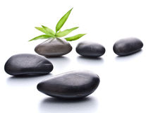 Zen pebbles Royalty Free Stock Photos