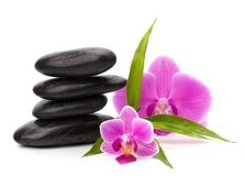 Zen pebbles balance. Royalty Free Stock Image