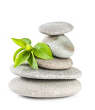 Zen pebbles balance. Royalty Free Stock Photo