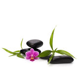 Zen pebbles balance. Spa and healthcare concept. Stock Photos