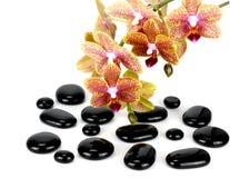 Zen pebbles balance.. Stock Images