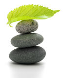 Zen pebbles and green leaf Royalty Free Stock Photos