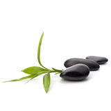 Zen pebbles path. Spa and healthcare concept.  Royalty Free Stock Photo