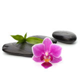Zen pebbles path. Spa and healthcare concept. Stock Photo