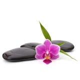 Zen pebbles path. Spa and healthcare concept.  Stock Image