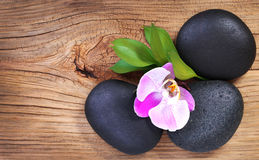 Zen pebbles. Spa Stones and Pink Orchid Flower with Green Leaves. On Wooden Background stock photography