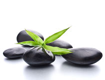 Zen pebbles. Stone spa and healthcare concept. Stock Image