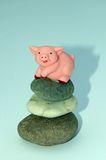 Zen pig Stock Photos