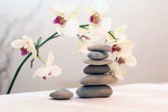 Zen pyramid. Stones and flower in the bath room Stock Images
