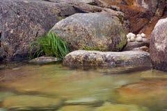 Zen, relajación natural Imagen de archivo