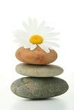 Zen, relax Stock Photography