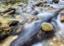 Zen River Stone IV Stock Images