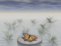 Zen rock with butterfly Royalty Free Stock Image