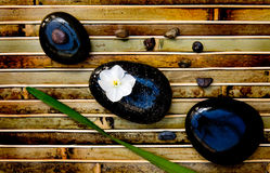 Zen rocks with flower Royalty Free Stock Photos