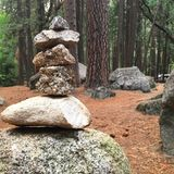 Zen Rocks in a forest. Rocks are balanced, Zen-like, in a forest in Yosemite National Park Royalty Free Stock Images