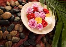 Zen rose Stock Image