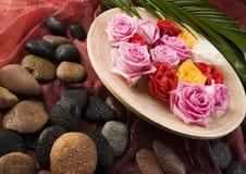 Zen roses Stock Image